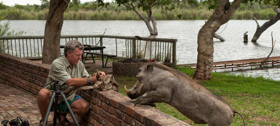 Pete Oxford with a warthog